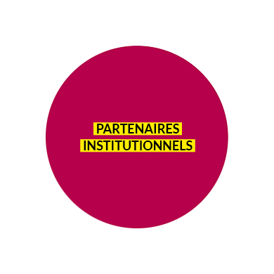 partenairesinstit